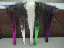 Wholesale 50pcs peacock tail feathers 75-80cm/28-30in variety of colors diy hot