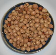 Peas (Southern) - Knuckle Purplehull Brown Crowder (Vigna unguiculata) Seeds