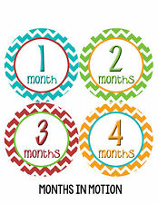 Baby Girl/Boy Gender Neutral Monthly Baby Stickers Month Milestone Sticker 007
