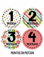 Baby Girl Monthly Baby Stickers 12 Month Milestone Birthday Sticker Photo #267