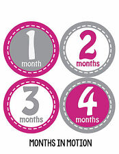 Baby Girl Monthly Photo Shirt Stickers 12 Month Milestone Sticker Newborn #229