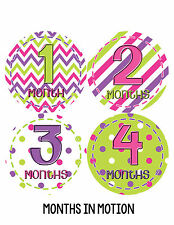 Baby Girl Monthly Photo Shirt Stickers 12 Month Milestone Sticker Newborn #278