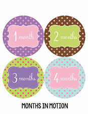 Baby Girl Monthly Photo Shirt Stickers 12 Month Milestone Sticker Newborn #211