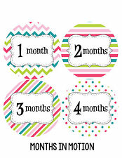 Baby Girl Monthly Photo Shirt Stickers 12 Month Milestone Sticker Newborn #212