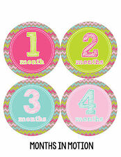 Baby Girl Monthly Photo Shirt Stickers 12 Month Milestone Sticker Newborn #227
