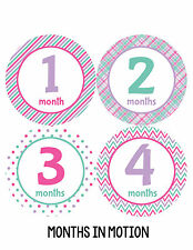 Baby Girl Monthly Photo Shirt Stickers 12 Month Milestone Sticker Newborn #202