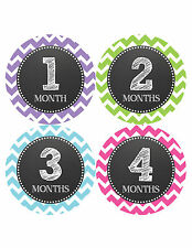 Baby Girl Monthly Milestone Birthday Stickers 12 Month Sticker Photo Prop #071