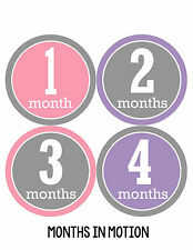 Baby Girl Monthly Baby Stickers 12 Month Age Sticker Just Born Photo #174