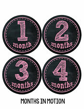 Baby Girl Monthly Photo Shirt Stickers 12 Month Milestone Sticker Newborn #146