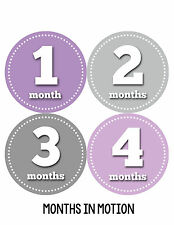 Baby Girl Monthly Photo Shirt Stickers 12 Month Milestone Sticker Newborn #054