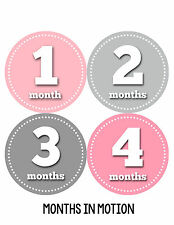 Baby Girl Monthly Photo Shirt Stickers 12 Month Milestone Sticker Newborn #046