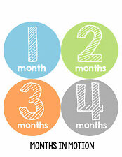Baby Boy Monthly Milestone Birthday Stickers 12 Month Photo Shirt Sticker #108
