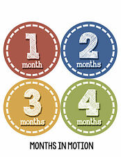 Baby Boy Monthly Milestone Birthday Stickers 12 Month Photo Shirt Sticker #094