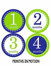 Baby Boy Monthly Milestone Birthday Stickers 12 Month Photo Shirt Sticker #080