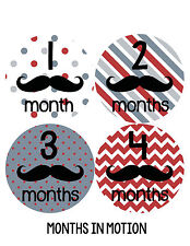 Baby Boy Monthly Milestone Birthday Stickers 12 Month Photo Shirt Sticker #257