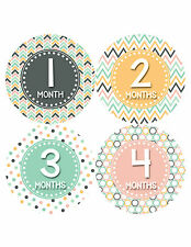 Baby Girl Monthly Baby Stickers Style #417