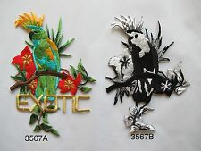 #3567 Cockatoo Parrot Bird,Flower,EXOTIC word Embroidery Iron On Applique Patch