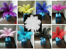 Wholesale 10-100pcs High Quality Natural OSTRICH FEATHERS 6-24 inch/15-60 cm