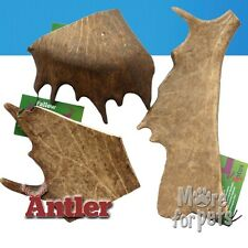 NEW 100% Natural FALLOW Deer Antler Dog Chews Hypo-Allergenic Dog Chew Stagbar