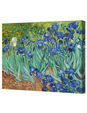 DecorArts Irises in the Gardenby Van Gogh Giclee Print   Canvas Gallery Wrapped