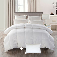 Luxury White Goose Down Comforter 600TC,100% Cotton,and 1 Goose Feather Pillows