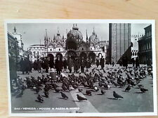 St Mark's Square Piazza San Marco & Pigeons Venice Italy RP Postcard B13