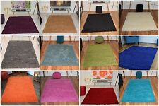 New Small Modern 60x110cm Soft Thick 5cm Pile Shaggy Rugs Mat Carpet Area Rug