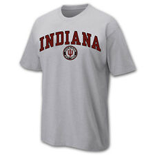 Indiana Hoosiers Adult Arch and Ring T-Shirt - Sport Gray