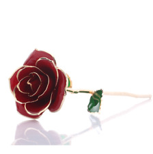 Birthday Souvenir Gifts Real Rose Flower 24k Gold Plated Rose with Gift Box