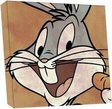 NEW Looney Tunes Official Licensed Canvas Print 30 x 30 cm 12 Designs Retro Gift