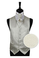 "Mens Ivory Scroll Waistcoat 42"" Chest, Shirt Cravat Hankie Package Wedding Wear"