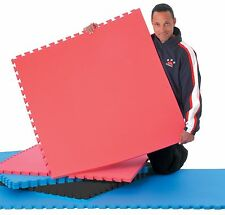 Cheap Jigsaw Mats Martial arts Gym Flooring Mat Exercise 1m x 1m