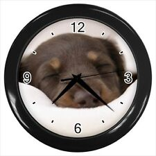 Miniature Dachshund Dog  - Wall Clock (Choose from 7 Colors) -HH4661