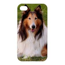 Collie Dog -Hard Case for Apple iPhone or iPod -AB4296