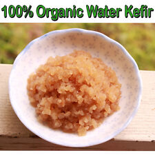Fresh Live Organic Probiotic Water Kefir Grains Culture - 30+ Probiotic Strains