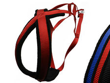 Dog Harness X-back Racing Style, Dog Sled, Skijoring, Canicross, Kondos Outdoors