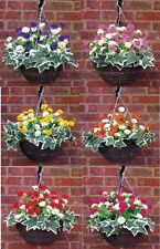 "(GREENWOODS) A/1 ( 12""BASKET X 15"" SPREAD ) ARTIFICIAL HANGING BASKET & FLOWERS"