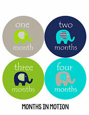 Months In Motion Baby Boy Monthly Milestone Stickers Month Sticker Elephant #151