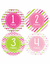 Baby Girl Monthly Milestone Birthday Stickers 12 Month Photo Shirt Sticker #377