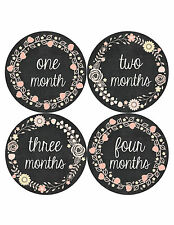 Baby Girl Monthly Baby Stickers 12 Month Milestone Birthday Sticker Photo #356