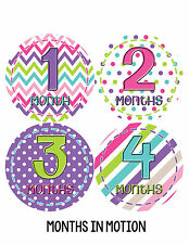 Baby Girl Monthly Photo Shirt Stickers 12 Month Milestone Sticker Newborn #277