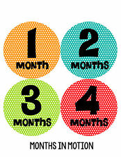 Baby Girl Monthly Baby Stickers 12 Month Age Sticker Just Born Photo #194
