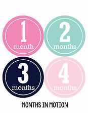 Baby Girl Monthly Baby Stickers 12 Month Age Sticker Just Born Photo #175