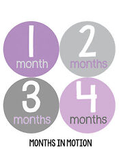 Baby Girl Monthly Photo Shirt Stickers 12 Month Milestone Sticker Newborn #157
