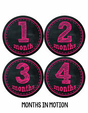 Baby Girl Monthly Photo Shirt Stickers 12 Month Milestone Sticker Newborn #147
