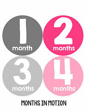 Baby Girl Monthly Photo Shirt Stickers 12 Month Milestone Sticker Newborn #102