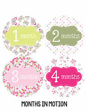 Baby Girl Monthly Photo Shirt Stickers 12 Month Milestone Sticker Newborn #036