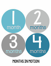 Baby Boy Monthly Milestone Birthday Stickers 12 Month Photo Shirt Sticker #158