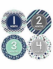 Baby Boy Monthly Milestone Birthday Stickers 12 Month Photo Shirt Sticker #412