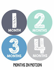 Baby Boy Monthly Milestone Birthday Stickers 12 Month Sticker Photo Prop #015